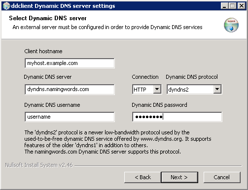 Select Dynamic DNS server page