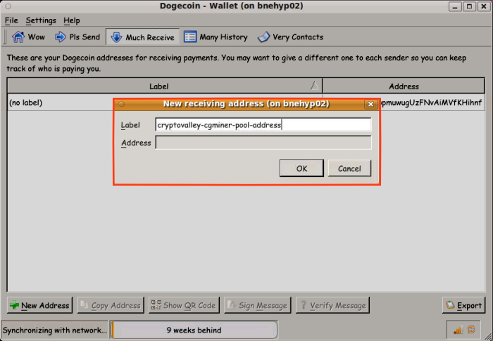The dialog box after clicking 'New address' on the 'Receive' 'Much Receive' screen of bitcoin-qt dogecoin-qt